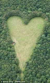 green%2Bheart.jpg